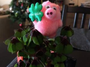 Glücksschwein zu Silvester